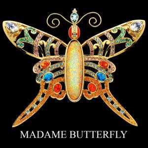 Butterflies & Spiders 6